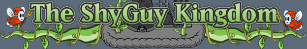 The Shyguy Kingdom